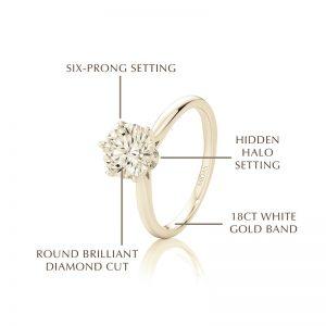 Round Brilliant Diamond Cut Engagement Ring