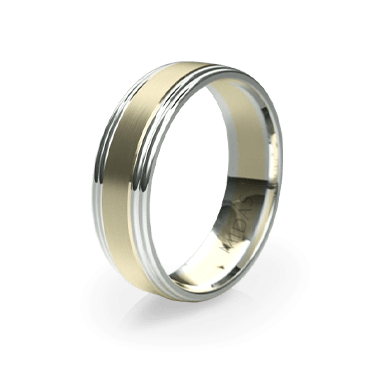 Polished Ring with Double Tiered Borders (QF1402)